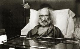 Pura Sangre (Luis Ospina, 1982)