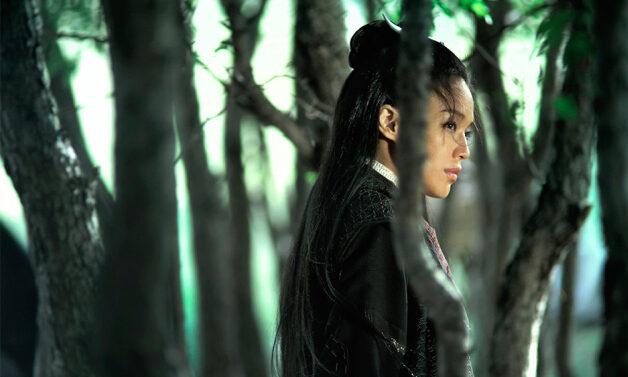 The Assassin (Hou Hsiao-hsien, 2015)