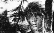 La infancia de Iván (Andrei Tarkovsky, 1962)