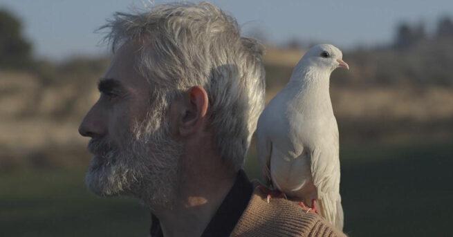 El corto documental español brilla en DocumentaMadrid 2017