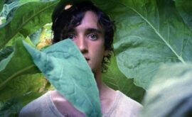 Lazzaro feliz, de Alice Rohrwacher
