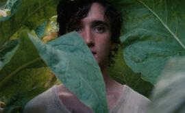 Lazzaro feliz (Alice Rohrwacher, 2018)