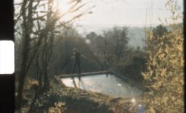 Más allá de los jardines secretos del cine gallego
